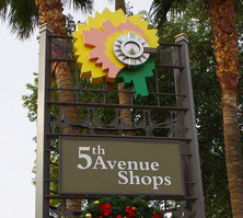 5th Avenue Shopping District